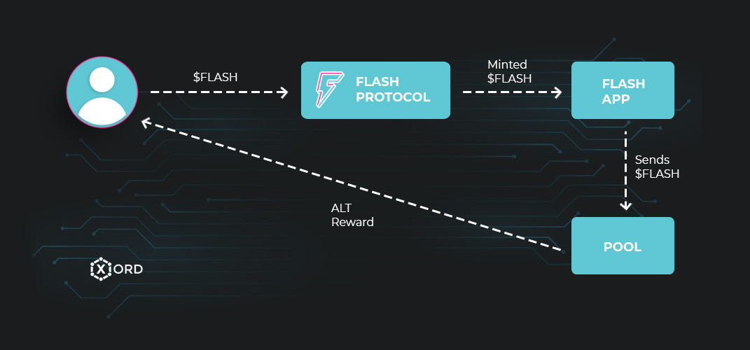 Flash Ecosystem Flow Diagram